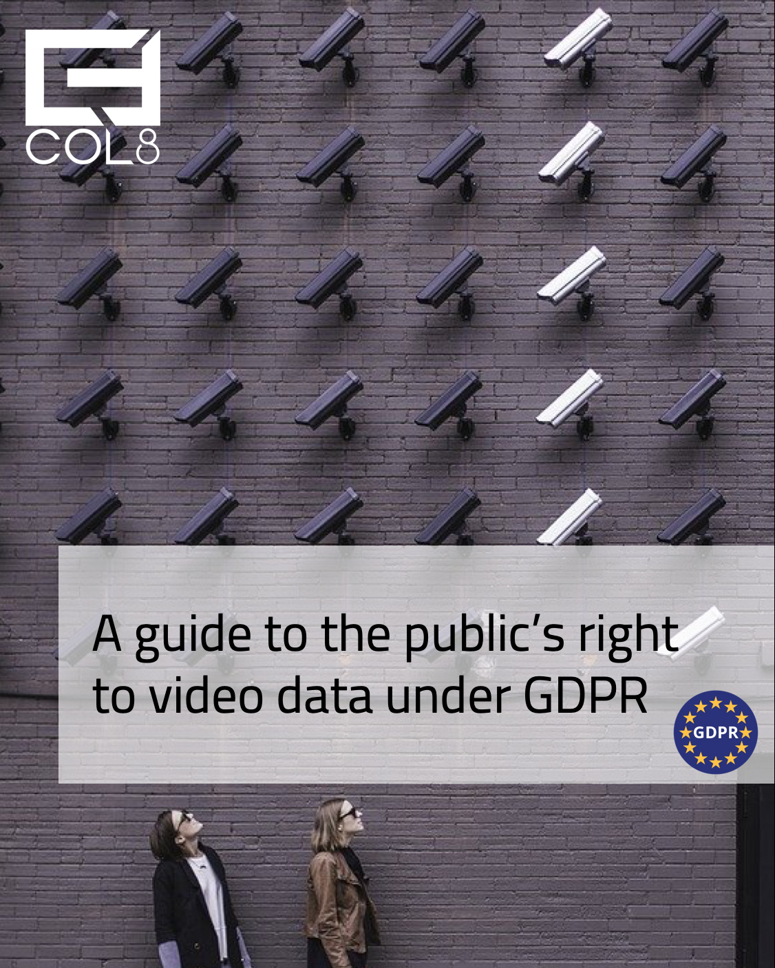 Video and the rights of the public guide cover